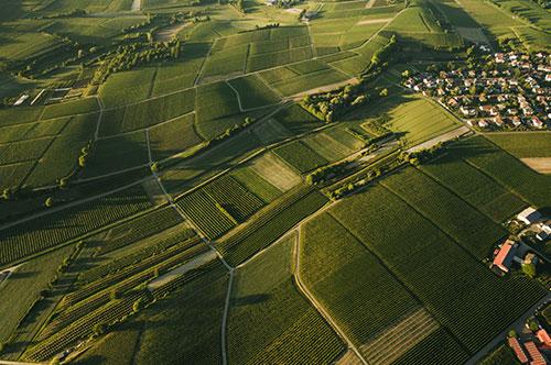 קרקע טובה - מומחים בקרקעות חקלאיות למכירה