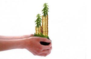 קרקעות מסוג חקלאיות למטרות של השקעה