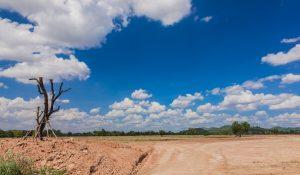 קרקע חקלאית בחולון
